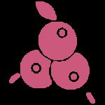 berry-design